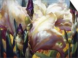 Iris Garden Poster by Elizabeth Horning