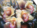Orchid Sonata Prints by Elizabeth Horning