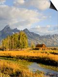 Historic Barn, Mormon Row and Teton Mountain Range, Grand Teton National Park, Wyoming, USA Prints by Michele Falzone