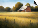 Country Meadow II Prints by David Marty