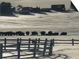 Utah, Mt. Carmel Junction, Buffalo Ranch, Winter, USA Posters by Walter Bibikow