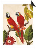 Tropical Red Pair Prints by Colleen Sarah