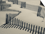 New York, Long Island, the Hamptons, Westhampton Beach, Beach Erosion Fence, USA Prints by Walter Bibikow