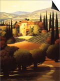 Green Hills of Tuscany II Posters by Max Hayslette