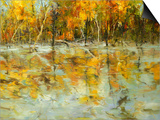 Reflections of Autumn Prints by Tim Howe