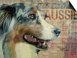 Aussie Prints by Wendy Presseisen