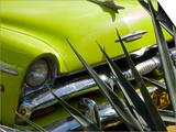 Havana, Vintage American Cars, Havana, Cuba Posters af Paul Harris