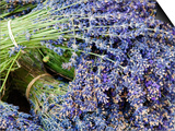 Lavender Bundles for Sale in Roussillon, Sault, Provence, France Print by Nadia Isakova