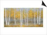 Golden Birch Panel Prints by Jill Schultz McGannon