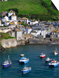England, Cornwall, Port Isaac, UK Posters by Alan Copson