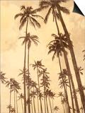 Palm Vista V Art by Thea Schrack