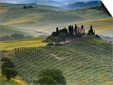 Italy, Tuscany, Siena District, Orcia Valley, Podere Belvedere Near San Quirico D'Orcia Posters by Francesco Iacobelli