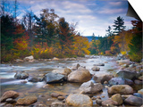 Swift River, White Mountain National Park, New Hampshire, USA Posters by Alan Copson
