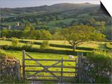 Sheepstor, Dartmoor, Devon, England Kunstdrucke von Peter Adams