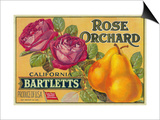 Rose Orchard Pear Crate Label - San Francisco, CA Print by  Lantern Press
