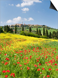 Hill Town Pienza and Field of Poppies, Tuscany, Italy Prints by Nadia Isakova