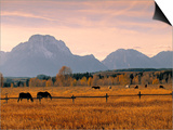 Jackson, Teton Range, Wyoming, USA Prints by Walter Bibikow