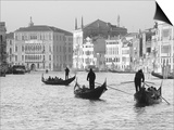 Gondoliers on the Gran Canal, Venice, Veneto Region, Italy Prints by Nadia Isakova