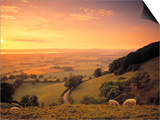 Coaley Peak, Dursley, Cotswolds, England Kunstdrucke von Peter Adams