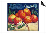 Sebastopol Gravensteins Apple Label - Sonoma, CA Poster by  Lantern Press