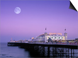Palace Pier, Brighton, East Sussex, England Print by Rex Butcher