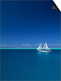 Sailing Boat, Mamanuca, Fiji Posters by Neil Farrin
