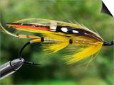 Traditional Salmon Fishing Fly, UK Print by John Warburton-lee