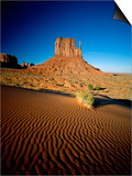 Monument Valley and Sand Dunes, Arizona, USA Prints by Steve Vidler