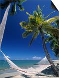Hammock on Beach, Danarau, Viti Levu, Fiji Posters by Neil Farrin