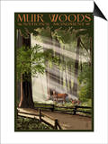 Muir Woods National Monument, California - Deer and Fawns Prints by  Lantern Press