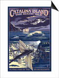 Catalina Island, California - Flying Fish Posters