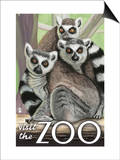 Visit the Zoo, Ring Tailed Lemurs Prints by  Lantern Press