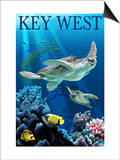 Key West, Florida - Sea Turtles Posters by  Lantern Press