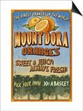 Mount Dora, Florida - Orange Orchard Sign Prints by  Lantern Press