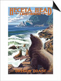 Heceta Head Lighthouse - Sea Lions Poster by  Lantern Press