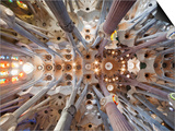 Spain, Barcelona, Sagrada Familia, Interior Prints by Steve Vidler