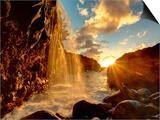 USA, Hawaii, Kauai, Queen's Bath and Waterfall Prints by Michele Falzone