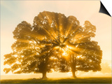 Sunrise, Usk Valley, South Wales, UK Prints by Peter Adams