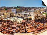 Morocco, Fes, Medina (Old Town), Traditional Old Tanneries Posters by Michele Falzone