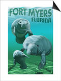 Manatees - Fort Myers, Florida Art by  Lantern Press