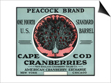 Cape Cod, Massachusetts - Peacock Brand Cranberry Label Prints by  Lantern Press