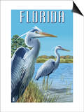 Blue Herons in Grass - Florida Prints by  Lantern Press