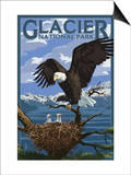 Eagle Perched with Chicks - Glacier National Park, Montana Prints