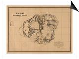 Hawaii - Panoramic Kauai Island Map Posters