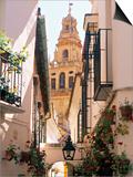 Cordoba, Andalucia, Spain Kunstdrucke von Peter Adams