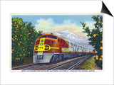 California - View of a Santa Fe Train Passing Through Orange Groves Prints by  Lantern Press