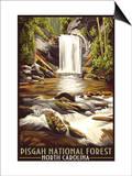 Pisgah National Forest - North Carolina Póster por  Lantern Press