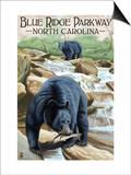 Blue Ridge Parkway, North Carolina - Black Bears Fishing Pósters por  Lantern Press