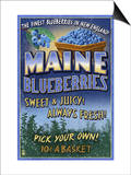 Maine Blueberries Art by  Lantern Press