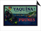 Portland, Oregon - Yaquina Prune Label Print by  Lantern Press